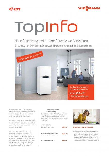 Viessmann 5 Jahre Gasheizung Garantie PDF Download