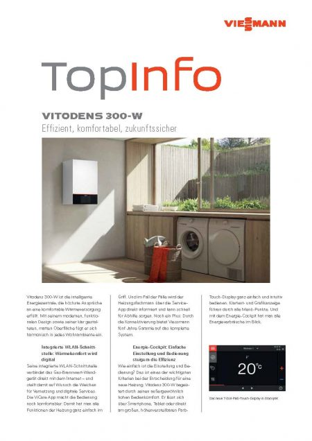 Viessmann VITODENS 300 W PDF Download